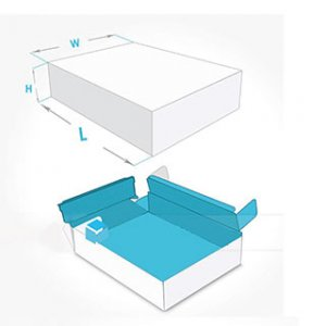 Double wall tray and lid