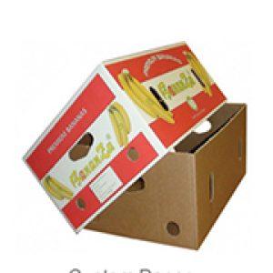 Custom Paper Fruit packaging